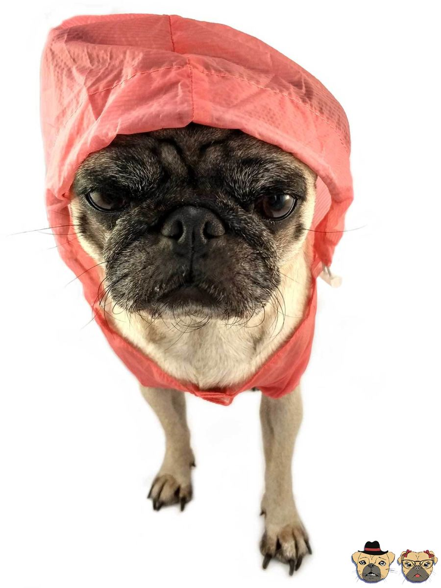 Raincoat For Dogs - Red Clothing