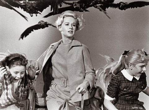 Still featuring Tippi Hedren from 'The Birds' by Alfred Hitchcock