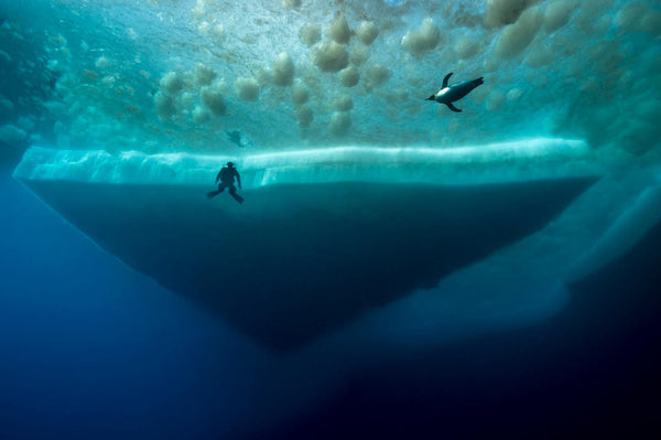 Under Antartica: Behind the Scenes photo by Laurent Ballesta