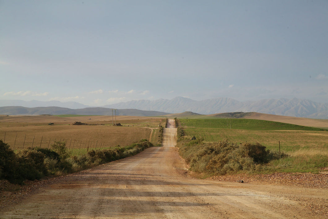 The Road by Michelle Pretorius