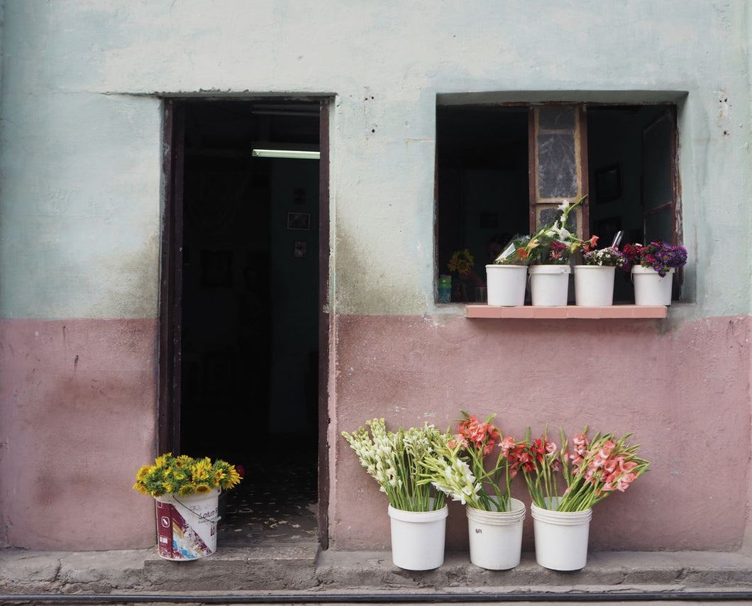 Cuba Flower Shop, Photo Print at 100Prints.co.uk