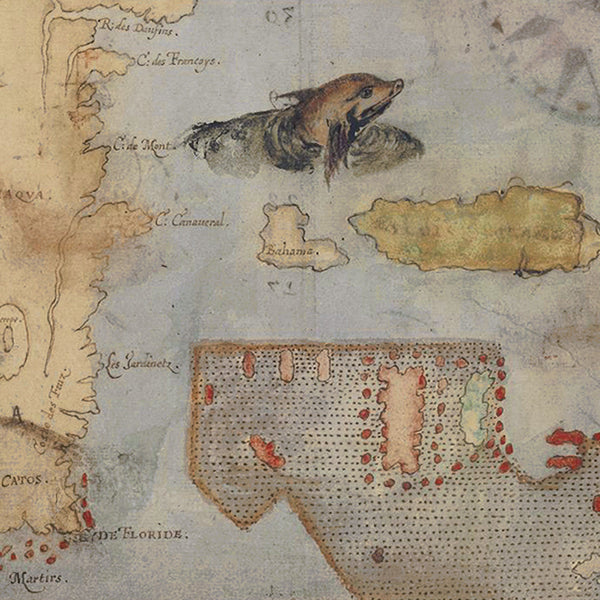 Virginia, 1585, La Virginea Pars (II), Florida, John White Map