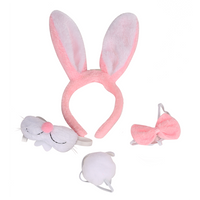 Easter Bunny Set - LED Ears Tail Bowtie Nose - Party Costume Accessory Decorations