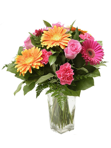 Gerbera Daisies and Pink Roses (Vase Included)