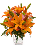 Orange Lily and Daisy Arrangement (Vase Included)