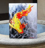 Koi Fish Aluminum Print, Unique Gift For Any Home or Office. 'The Silver Koi'.