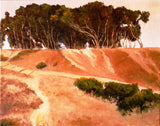 San Diego Oil Painting, Point Loma, Sunset Cliffs, Print on Aluminum, Original oil Painting
