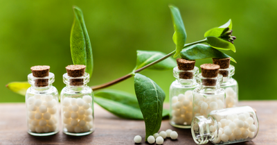 Homeopathy Workshops - Amanda Clifford