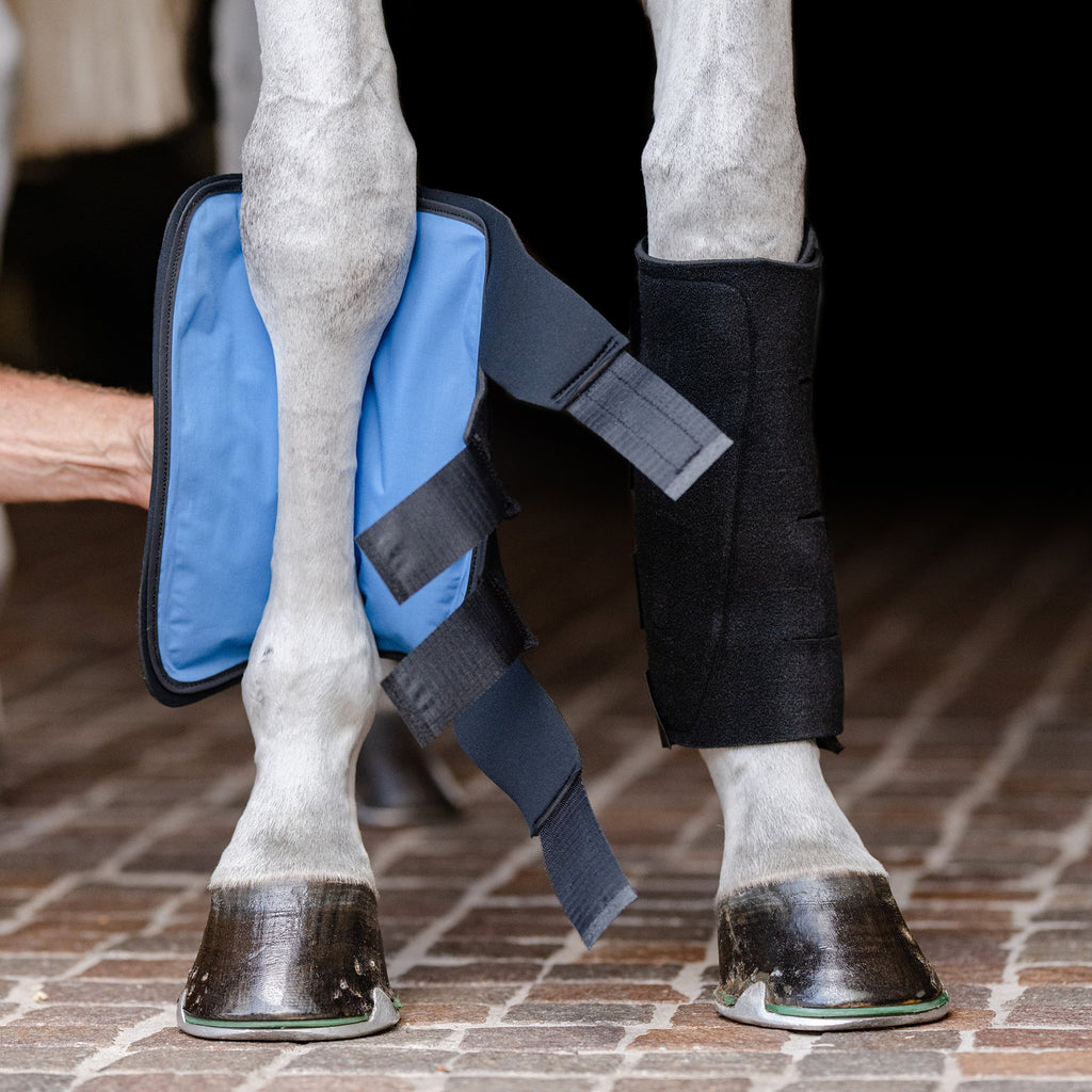 Essential Cold Therapy Tendon Boots by EquiFit