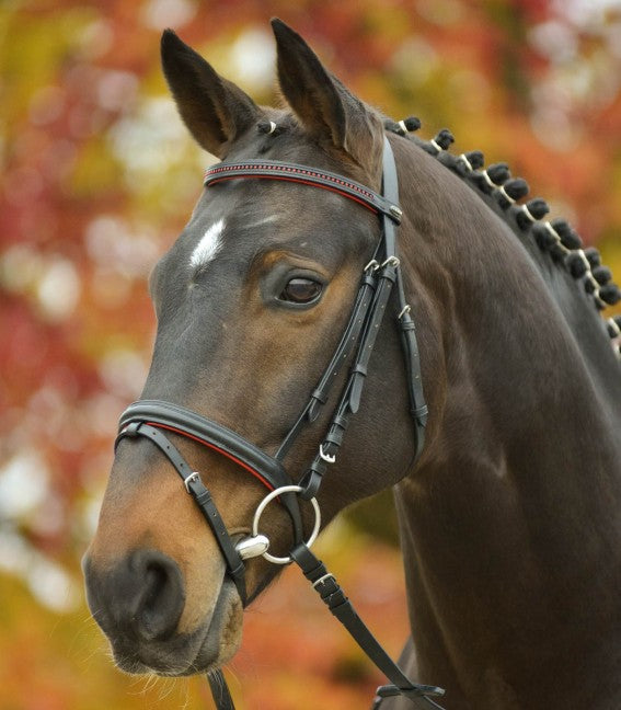 STAR Bridle Diamond by Waldhausen