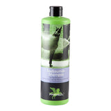 Tea Tree Oil Shampoo by Parisol