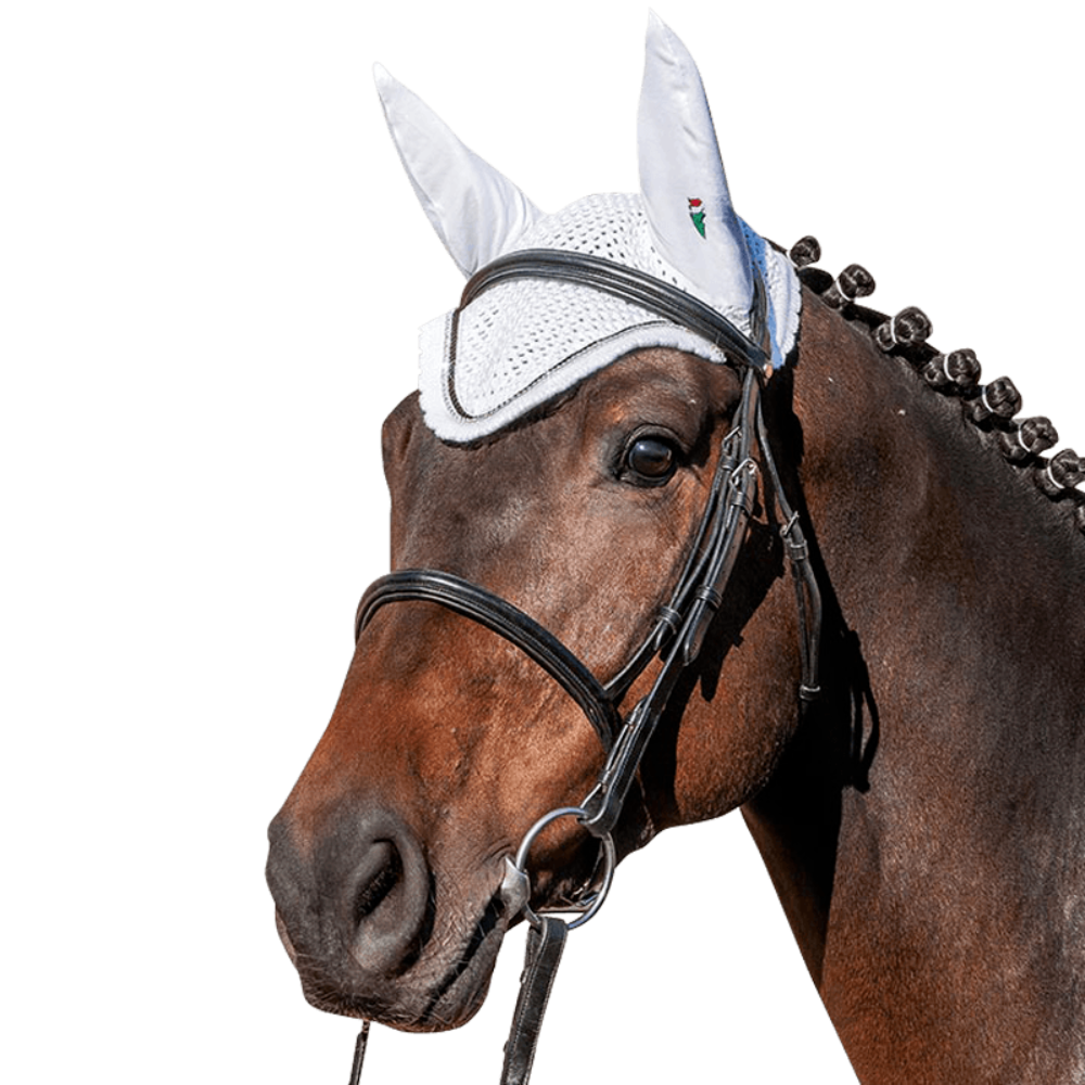 Fly Veil RIO by Equiline