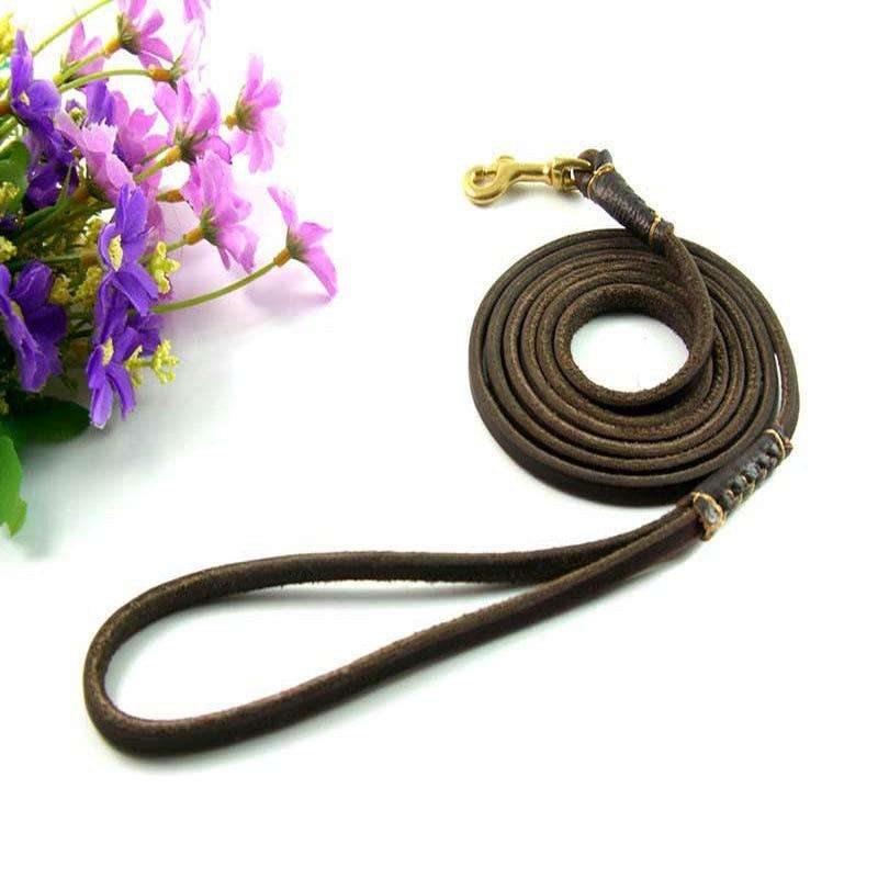 Premium Leather Dog Leash Brass Clip