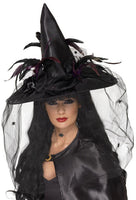 Witch Hat,  Net and Feathers