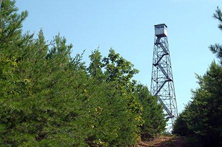 All Along The Fire Tower