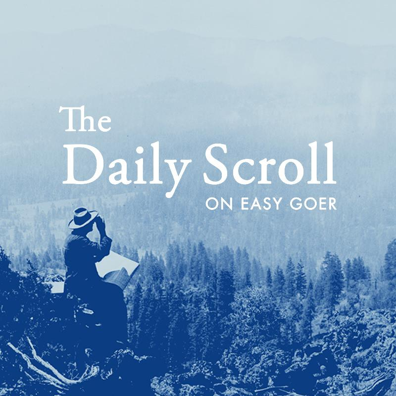 Daily Scroll
