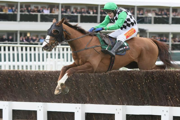 Cheltenham National Hunt Festival Tuesday - 15th - Friday 18th March 2022