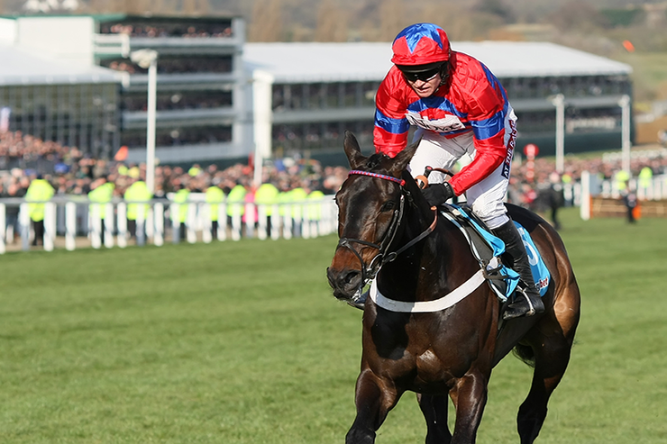 Cheltenham National Hunt Festival Tuesday - 16th - Friday 19th March 2021