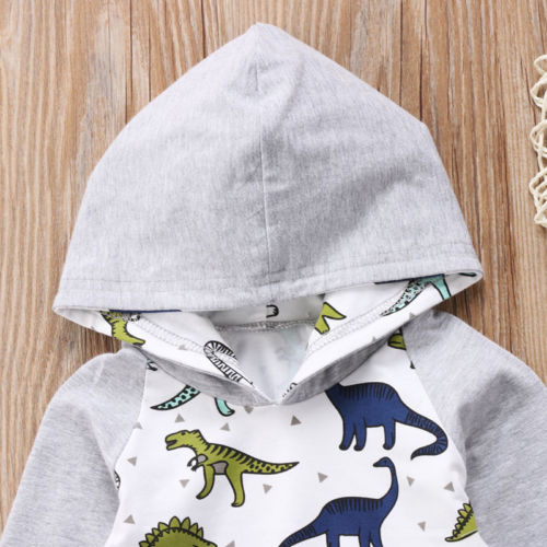 Gray 'Dinosaur' Hoody Outfit