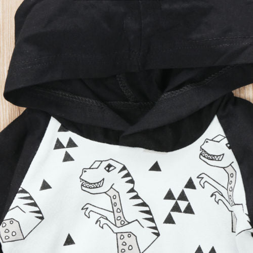 2 piece 'Dinosaur' Hoody Outfit