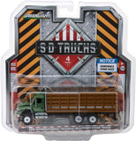 Greenlight 1/64 S.D. Trucks Series 4 (6)-autoworld-1