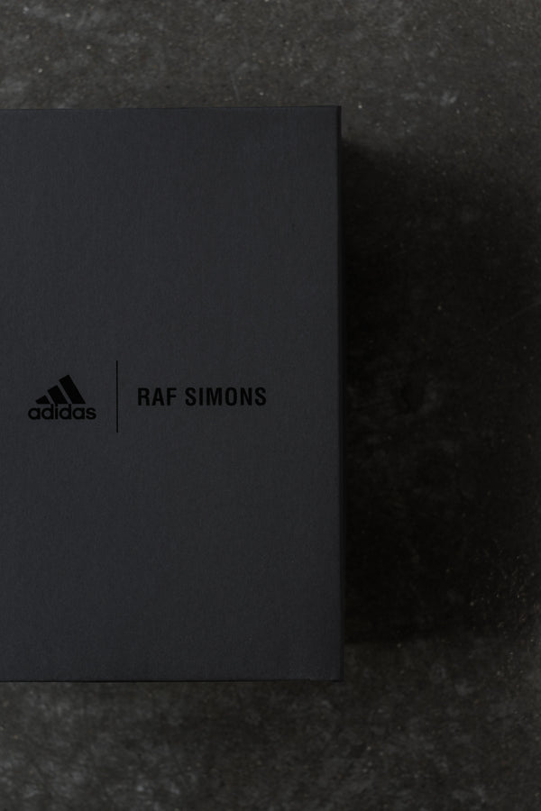 Introducing Adidas x Raf Simons