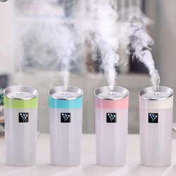 300ML Portable Humidifier & Essential Oil Diffuser Aromatherapy Mist Maker