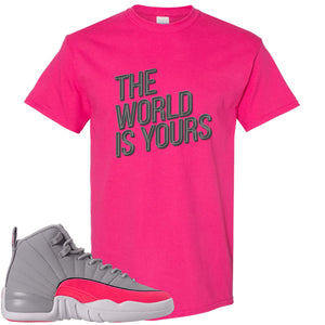 Air Jordan 12 GS Grey Pink Sneaker Hook Up The World is Yours Heliconia T-Shirt
