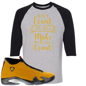Reverse Ferrari 14s Sneaker Hook Up Don't Count The Days Sport Grey and Black Raglan T-Shirt