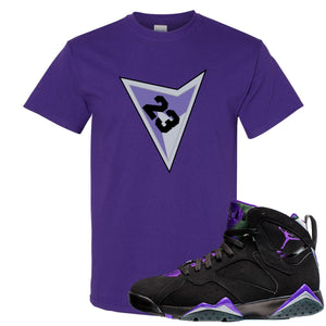 Air Jordan 7 Ray Allen Sneaker Hook Up Triangle Design with 23 Purple T-Shirt