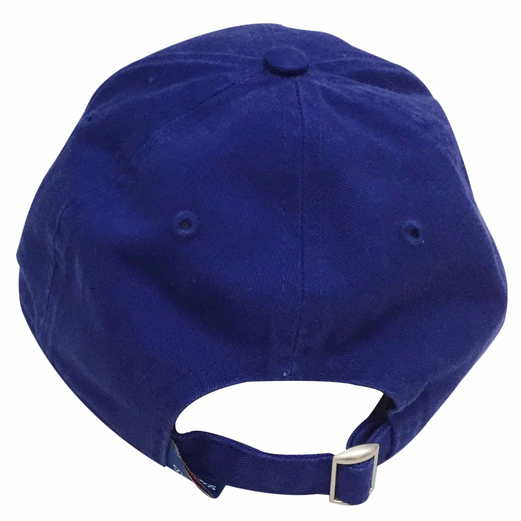 b403ad27 KIDS Los Angeles Dodgers Blue Youth Dad Hat