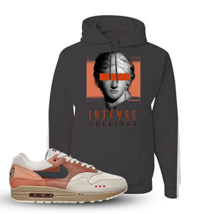 Air Max 1 Amsterdam City Pack Sneaker Charcoal Grey Pullover Hoodie | Hoodie to match Nike Air Max 1 Amsterdam City Pack Shoes | Intense Feelings
