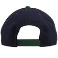 on the back of the notre dame fighting irish snapback hat is a green adjustable snap