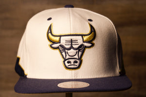 Bulls Snapback hat | Chicago Bulls Snapback Hook Up Jordan 5unk from above the front of this hat is the bulls logo in white purple and gold with a purple brim
