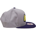 the batman throwback lettering dc comics snapback hat has a high gray crown and a flat dark blue brim