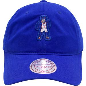 the philadelphia 76ers mascot dad hat has franklin the dog on the front