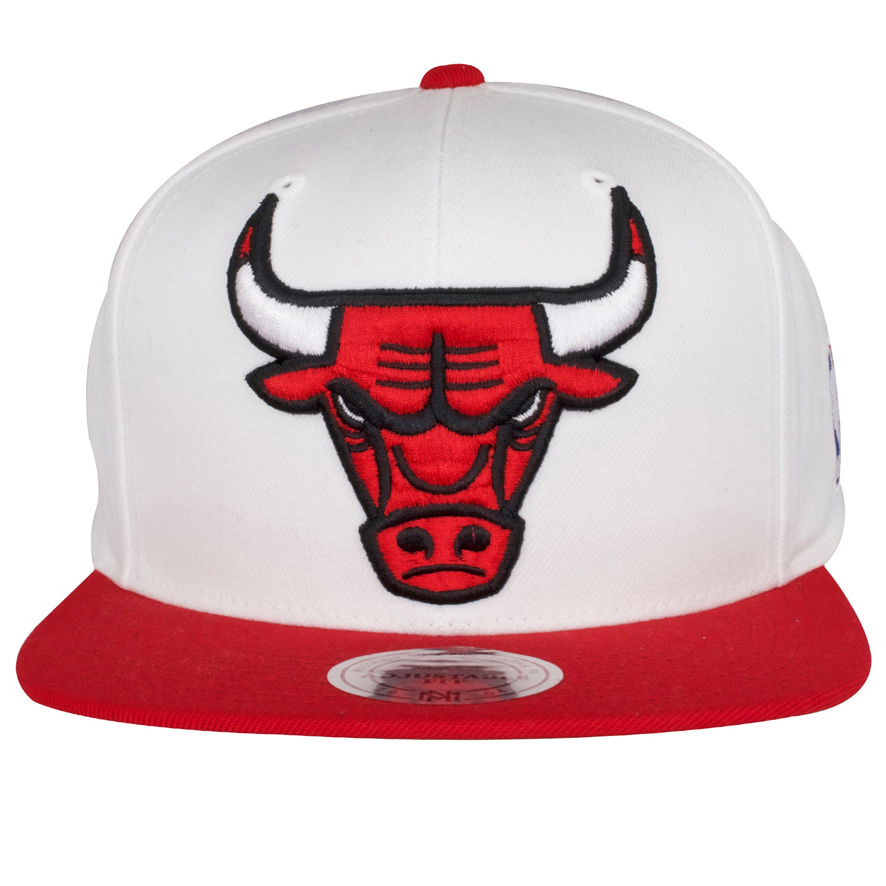 88e37ae66c1 on the front of the chicago bulls win like '96 11s sneaker matching  snapback hat