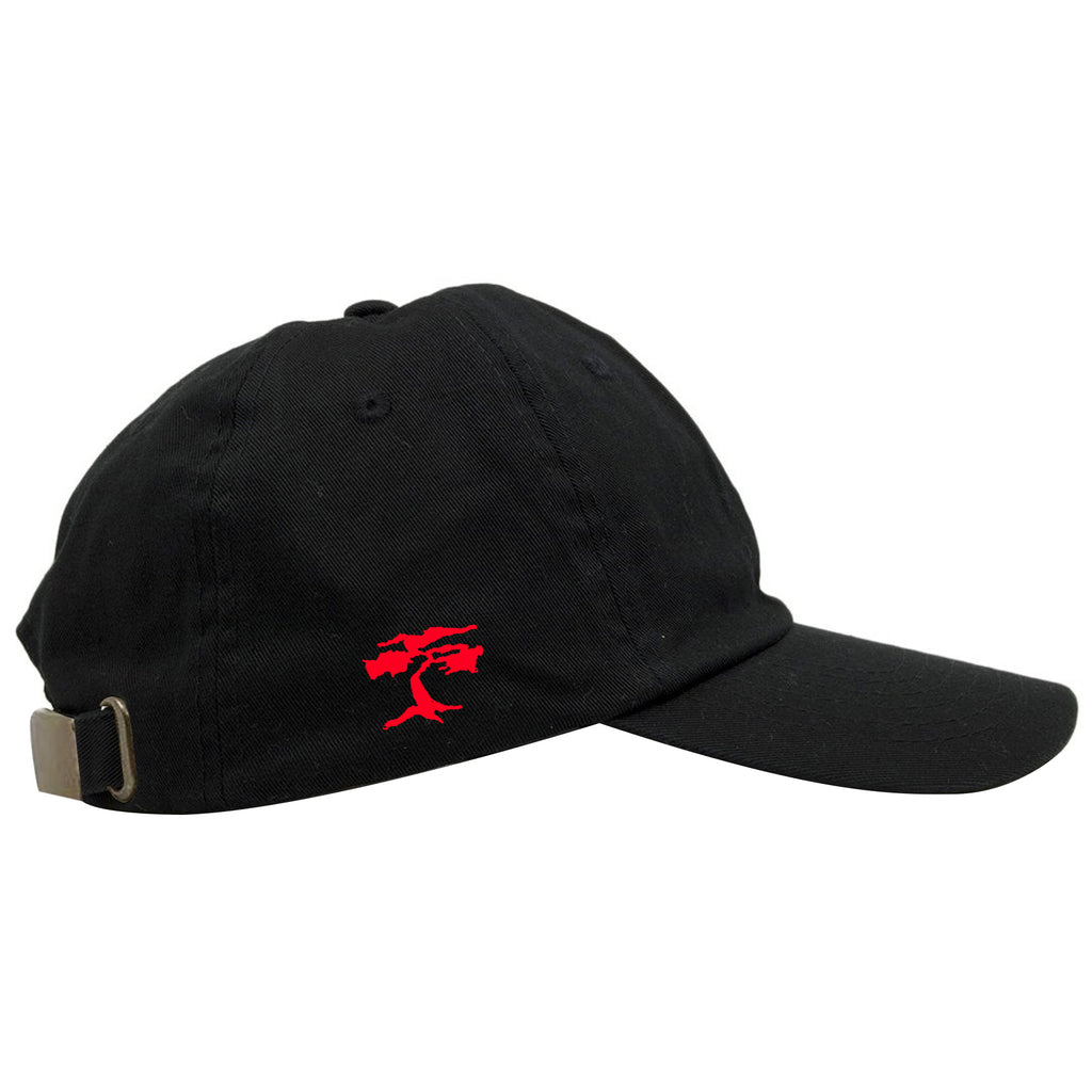 Michael's Secret Stuff Space Jam Inspired Black Dad Hat – Cap Swag