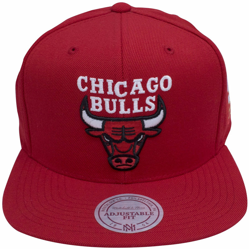 on the front of the Chicago Bulls 50th anniversary snapback hat is a Chicago Bulls logo embroidered in red, black, and white
