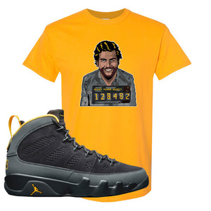 Air Jordan 9 Charcoal University Gold T Shirt | Escobar Illustration, Gold