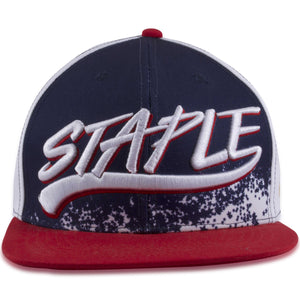 Staple Team USA Olympic Red, White, Blue Snapback Hat