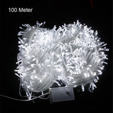 10M 20M 30M 50M 100M LED string Fairy light holiday decoration AC220V 110V Waterproof outdoor light with controller