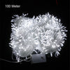 Image of 10M 20M 30M 50M 100M LED string Fairy light holiday decoration AC220V 110V Waterproof outdoor light with controller