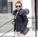 Winter Jacket women 2018 short winter jacket women hooded winter coat women Casual parka fur collar cotton padded