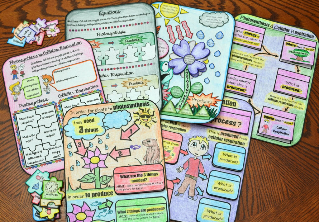 Cells interactive notebook stafford sisters cells interactive notebook ccuart Image collections