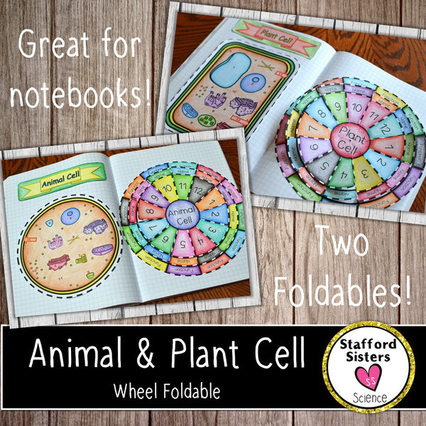 Animal and Plant Cell Wheel Foldables