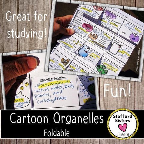 Organelles Cartoon or Animation Foldable - Metaphors