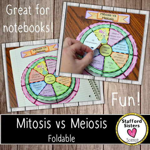 Mitosis and Meiosis Study Guide