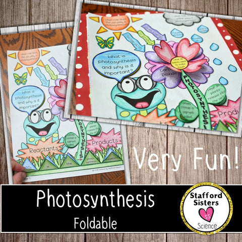 Photosynthesis Foldable