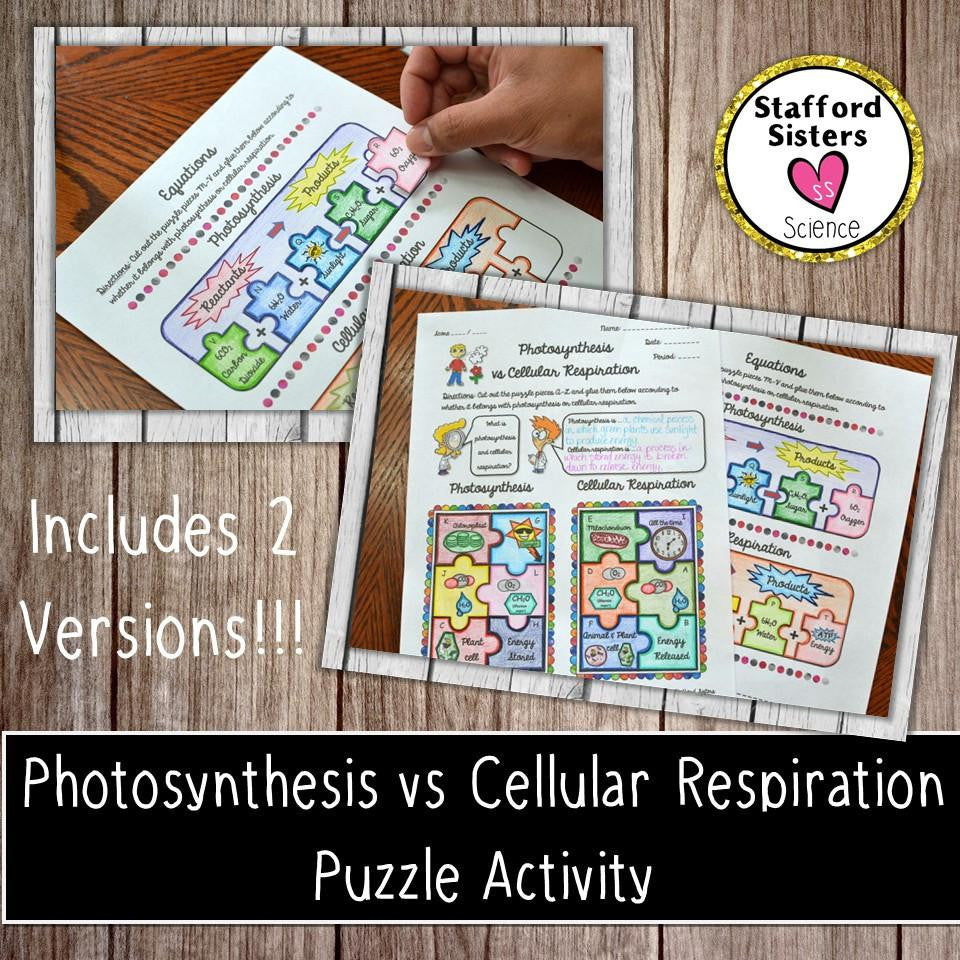 Photosynthesis vs Cellular Respiration Puzzle